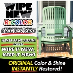 Recolor by Wipe New