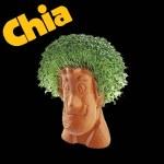 Chia Shaggy