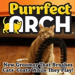 Purrfect Arch
