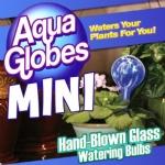 Aqua Globe Mini