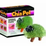 Chia Pet Puppy