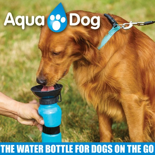 Aqua Dog Water Bowl Bottle