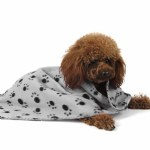 Fleece Paw Print Pet Blanket
