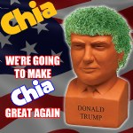 Chia Donald Trump