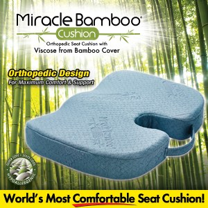 Miracle Bamboo Cushion