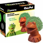 Chia Kermit The Frog