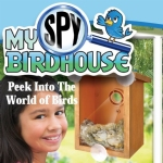 My Spy Birdhouse
