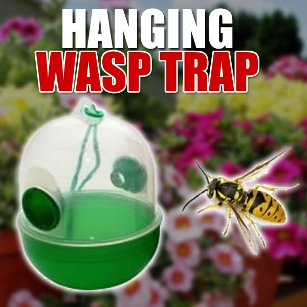 Hanging Wasp Trap
