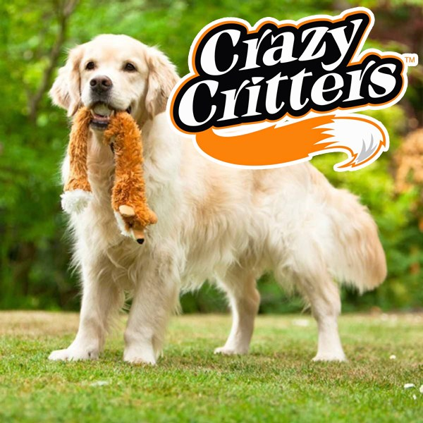 Crazy Critters Dog Toy