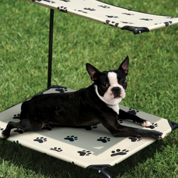 Paw Print Shaded Pet Cot