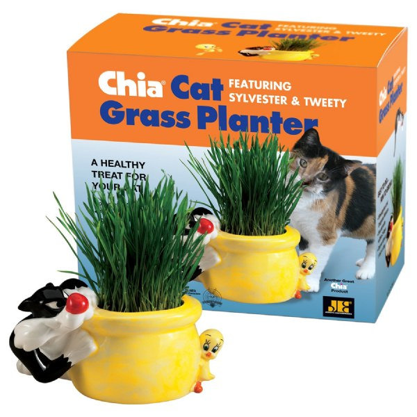 Chia Cat Grass Planter Sylvester and Tweety