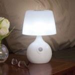 Motion Sensing LED Lamp