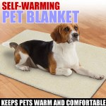 Self Warming Pet Blanket