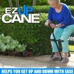EZ Up Cane